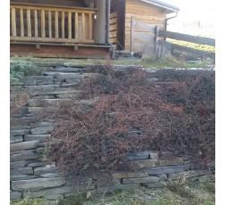 Stavební kámen  - břidlice